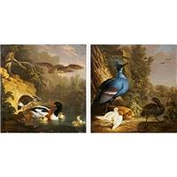 perdiz junto a un nido de paloma coronada victoria con sus crias (+ avefría intimidando a unos patos; pair) by jan augustini