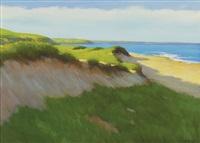 coastal dune scene by steven allrich