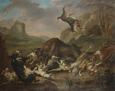 a bull attacking dogs by juriaen jacobsz