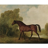 ambrosio, a bay stallion, the property of thomas haworth by george stubbs
