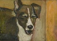 cane by mancouso grandinetti