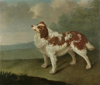 spaniel in a landscape by james hagarty
