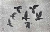 crows by matazo kayama