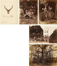 an album (51 works) by john dillwyn llewelyn
