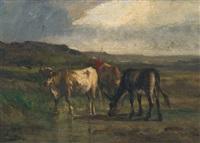 vaches dans un pré by antonio cortés cordero