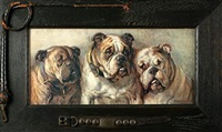 bulldogs by philip eustace stretton