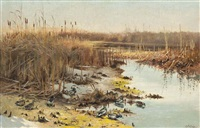 marshland life by george edward lodge