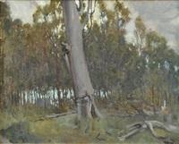 kallista landscape by nora gurdon