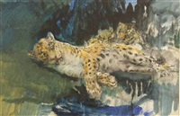 leopardess and cubs by john macallan swan