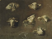 six studies of sheep heads by francesco londonio