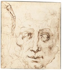 sheet of studies with the head of a man and a skeletal finger (+ figure studies by another hand, verso) by domenico beccafumi