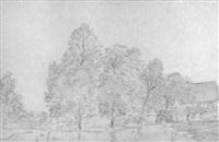 bäume an einem dorfweiher by peter becker