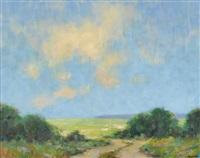over the marsh by steven allrich