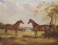 the duke of wellington's copenhagen; sir john water's bitter'; the duke of wellington's chestnut mare and white arabian... by william webb