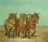 trekpaarden by karel de bauw