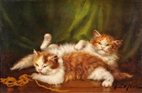 chats endormis by jules leroy
