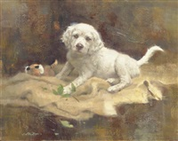 the botanist - english setter pup by robert kennedy abbett