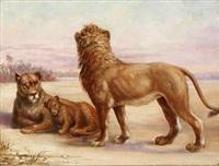 a lion family on the savannah by anna freeland