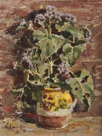 vase with geraniums by nicolae enea