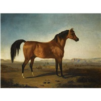 a chestnut stallion by j.a. marjoribanks