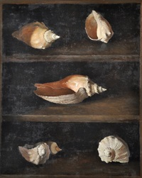caracoles by juan lascano