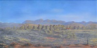 flinders ranges by jack absalom