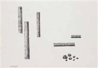 composizione di tronchi e sassi by cesare andreoni