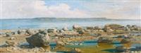 plage de marin en dessous de la falaise by auguste bachelin