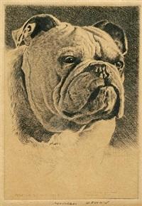 bulldog by morgan dennis