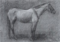 untitled - horse study by kate adeline smith hoole
