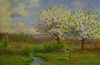 apple blossoms by edmund elisha case