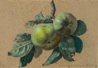 étude de pommes sur leur branche (study) by benoit chirat