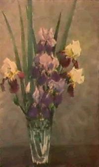 les iris by taissia afonina