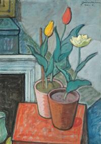 tulips by móric gábor