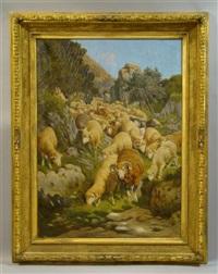 sheep on a hillside by alfredo de simoni