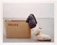 relaxed, alert, undisturbed, krups (+ 2 others; 3 works) by daniela steinfeld