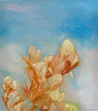hinterland magnolia by richard dunlop