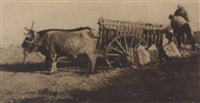 bullock cart, toledo by james craig annan