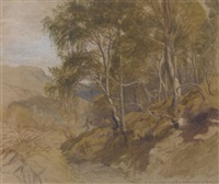 the road from bettwys-y-coed, north wales by james thomas linnell