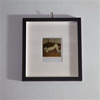 polaroid 07 by nobuyoshi araki