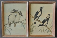 pair of kookaburras & pair of magpies (2 works) by neville henry peniston cayley