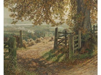 the harvest field, gowrie by james mcintosh patrick