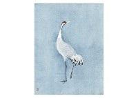 cranes by atsushi uemura