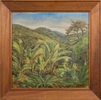 flamboyant, forêt d'ubatuba by rodolfo amoedo