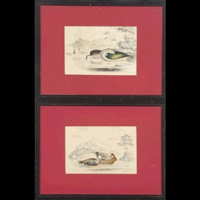 ornothological works (2 works) by christopher webb smith