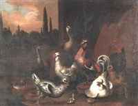a peacock, a peahen, a cockerel and other fowl by catharina ijkens