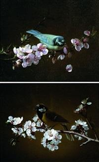 mésange charbonnière sur une branche de cerisier en fleurs (+ mésange bleue sur une branche; 2 works) by pierre etienne remillieux