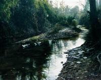 in a water side by xu weide