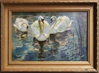 hyde park swans by beatrix charlotte dobie