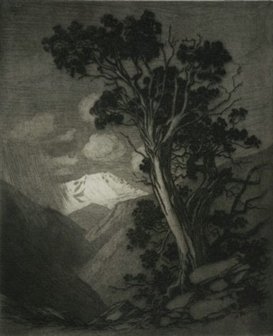 old cedar and pikes peak by george elbert burr